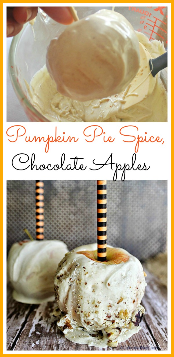 Homemade Chocolate Covered Pumpkin Pie Spice Apples- Why pay for pricey commercial chocolate covered apples when you can easily make your own at home! Here's how to make homemade chocolate covered pumpkin pie spice apples! | #recipe #dessert #food #chocolate #chocolateCoveredApples #fall #Halloween #partyFood #DIY #apples #ACultivatedNest