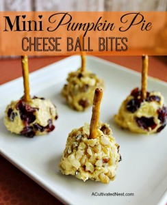 Mini Pumpkin Pie Cheese Ball Bites