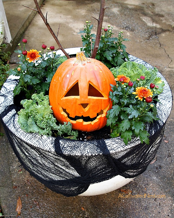 How to make a transitional fall/Halloween planter for your front porch area