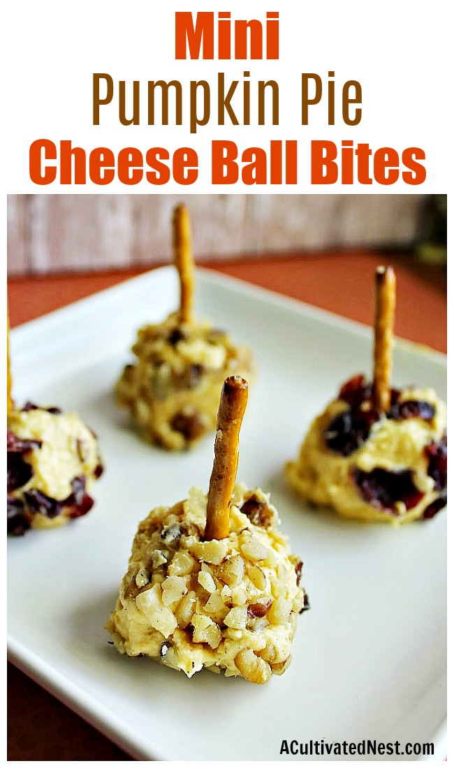 Mini Pumpkin Pie Cheese Ball Bites- These mini pumpkin pie cheese ball bites are a quick, easy, and inexpensive no-bake party appetizer that's perfect for fall! | no bake recipe, quick appetizer ideas, fall cheese recipes, autumn appetizers, #appetizer #noBake #ACultivatedNest