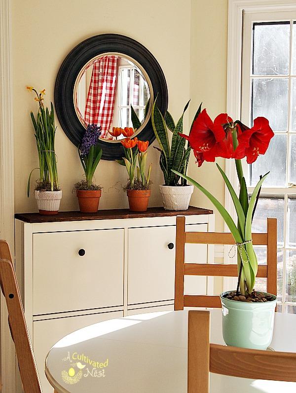 Ikea Hemnes Cabinet – Shoes Cabinet Ikea