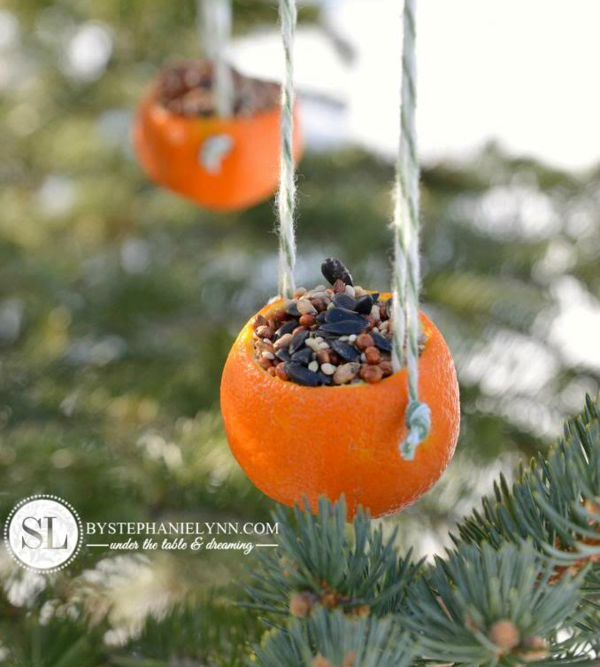Great ideas for re-using orange peels like this orange birdseed feeder from by Stephanie Lynn