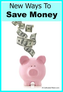 New Ways To Save Money In The New Year
