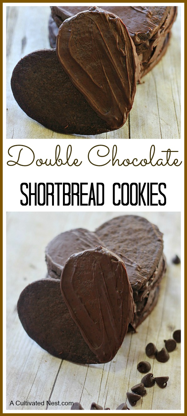 Delicious Double Chocolate Shortbread Cookies - Shortbread is pretty good just as is but making it chocolate AND adding an extra layer of chocolate just pushes the decadence level right over the top!
