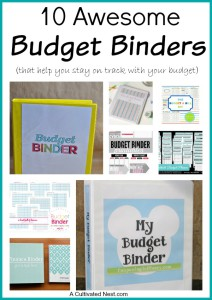 10 Budget Binder Pinterest Ideas & A Freebie
