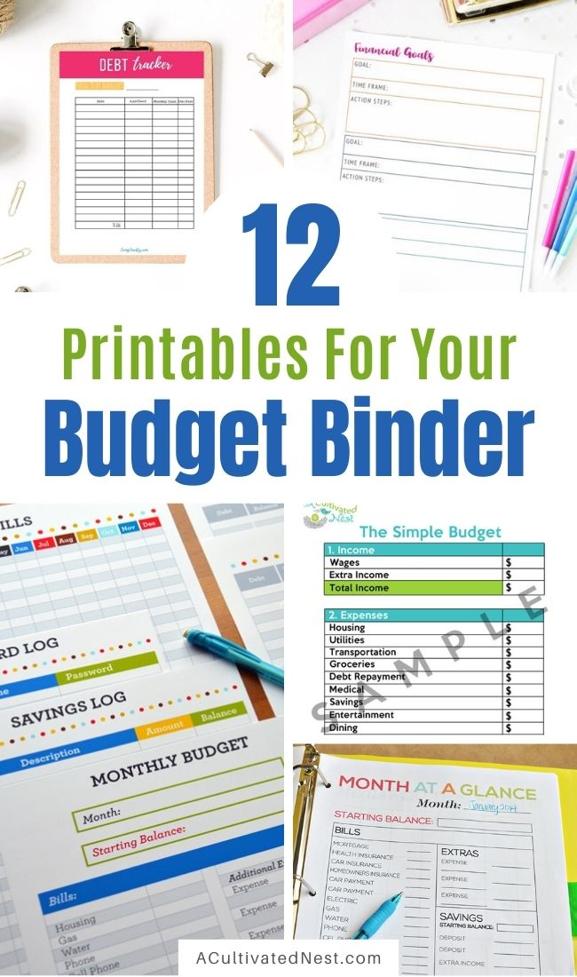 12 Budget Binder Pinterest Ideas and a Freebie- If you want to make a budget binder, you can DIY it from scratch, but using a pre-made one will save you a lot of time! Here are 12 pre-made printable budget binder pages to get you started! | #budget #budgeting #printables #budgetBinder #ACultivatedNest