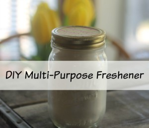 Make Your Own Multi-Purpose Freshener