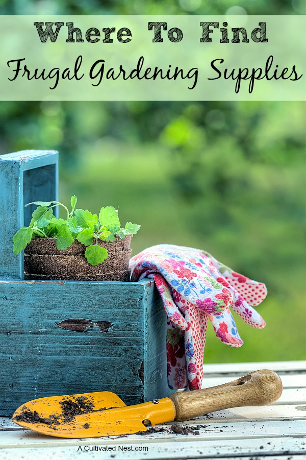 Where to find frugal gardening supplies