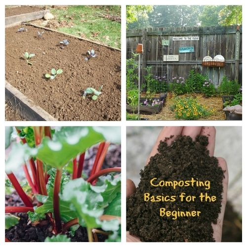 16 Resources for Newbie Gardeners- New to gardening? Here are 16 gardening articles every beginner gardener needs to read! | how to start a vegetable garden, beginning gardening, tips for new gardeners, #gardeningTips #gardening #vegetableGardening #ACultivatedNest