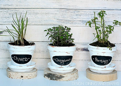 10 Creative DIY Planter Makeovers like these chalkboard painted herb pots