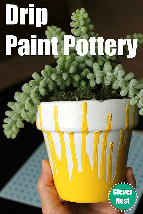10 Creative DIY Planter Makeovers - spruce up your old plain pots with these great ideas! Like this drip painted pot!