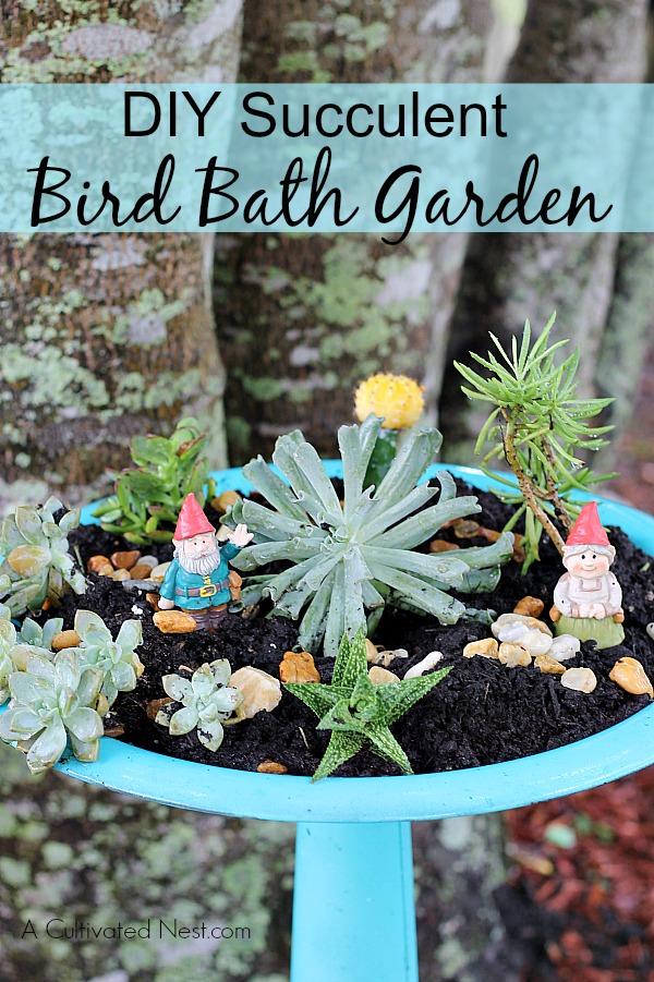 DIY Succulent Bird Bath Garden