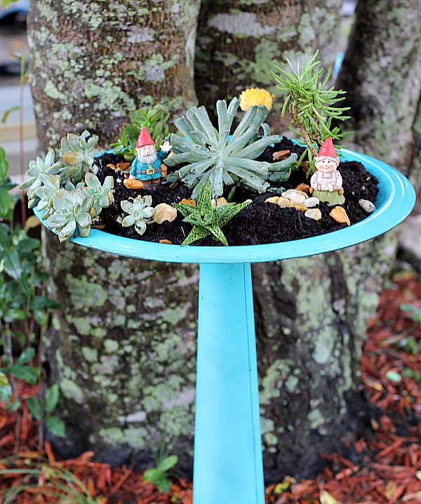Easy to make bird bath succulent garden diy succulent bird bath garden workwithnaturefo