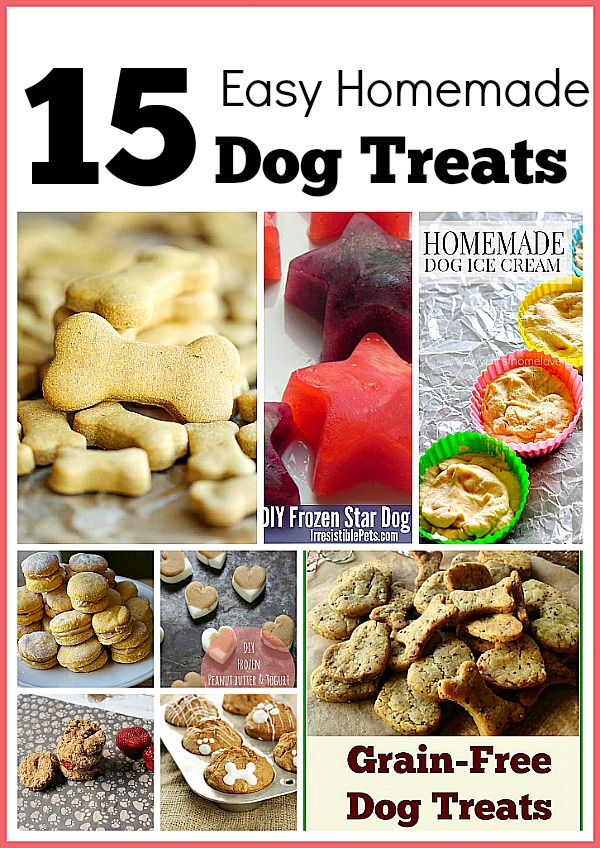 15 Homemade Dog Treats- Making your own homemade dog treats doesn't take long, saves you money, and gives you peace of mind since you know what's in them (no recall worries)! Check out these 15 easy homemade dog treats you can make for your furry friend! | #dogTreats #dogs #homemade #dogTreatRecipes #ACultivatedNest