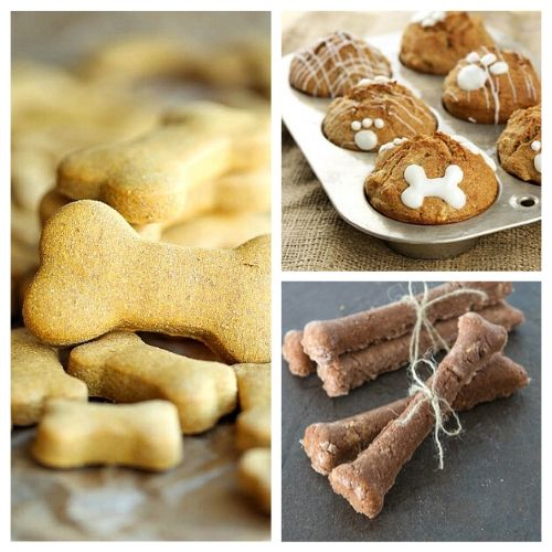 15 Easy Homemade Dog Treats- Give your dog something special to snack on! With these 15 delicious homemade dog treat recipes to choose from, you're sure to find a couple of new favorites for your furbaby! | DIY dog treats, #dogTreats #homemade #dog #ACultivatedNest