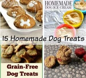 Save Money | 15 Easy Homemade Dog Treats