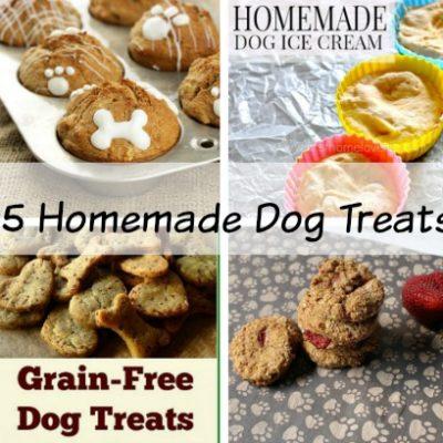 Save Money | 15 Easy Homemade Dog Treats
