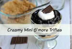 Creamy Mini S'more Trifle