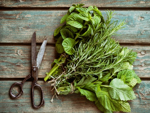 20 Food You Can Freeze - like fresh herbs