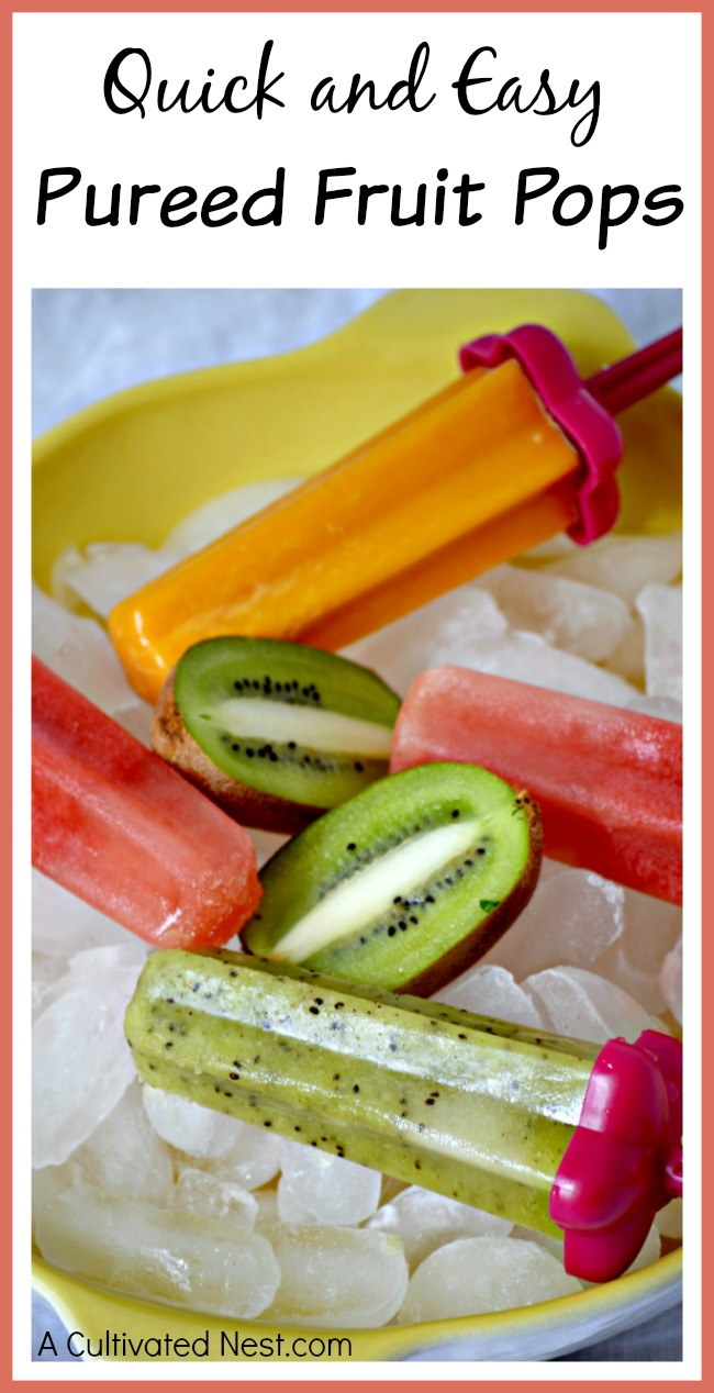 If you're craving a delicious cold treat, try making these quick and easy pureed fruit pops! Make whatever flavor you like with this simple recipe!