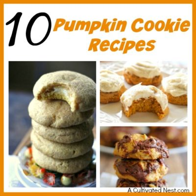 10 Delicious Pumpkin Cookie Recipes