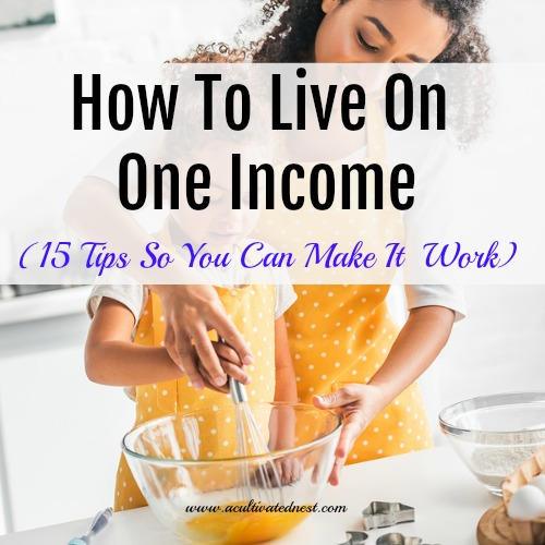 Money Saving Tips So You Can Live On One Income - How To Live On One Income - check out these 15 tips for living on one income from a Stay At Home Mom.. Your family can not only survive on one income but you can actually THRIVE and enjoy living on one income. SAHM, living on one income, budgeting, money saving tips #frugalliving #moneysavingtips #acultivatednest