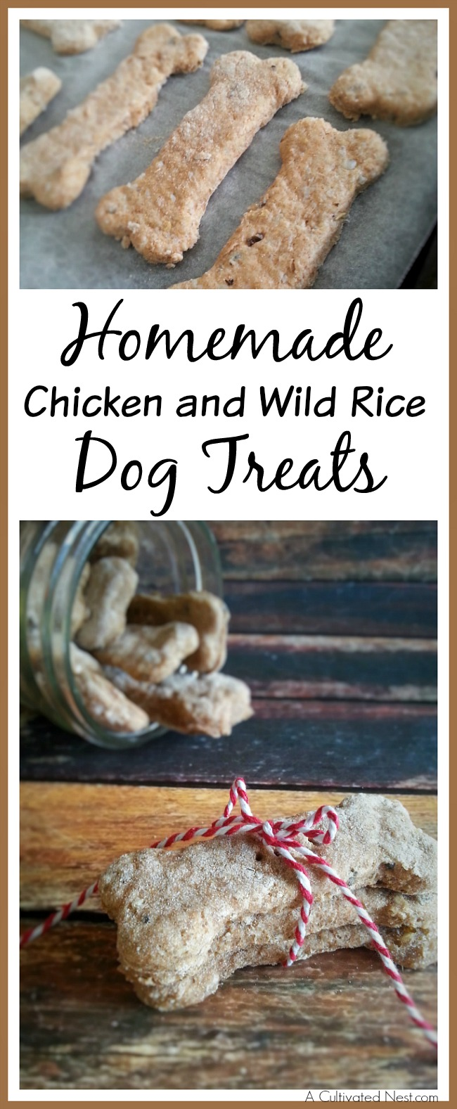 10 Yummy Dog Treats You Can Make at Home