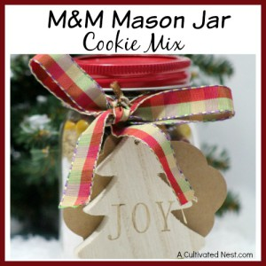 M&M Mason Jar Cookie Mix Recipe