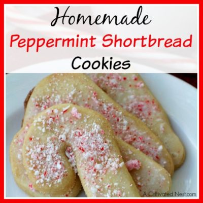 Homemade Peppermint Shortbread Cookies