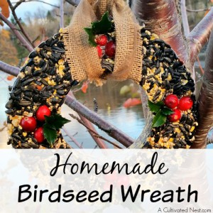 Homemade Birdseed Wreath