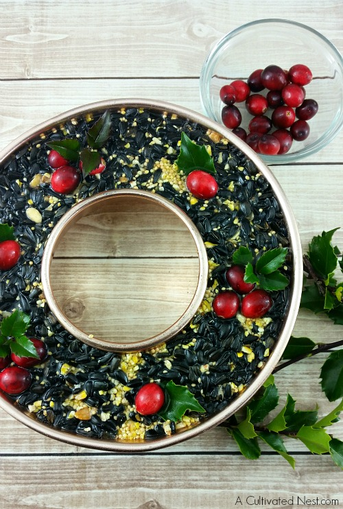 Great step by step tutorial! Attract beautiful birds and save money at the same time by making your own pretty DIY Birdseed Wreath! This is a fun project to do with the kids!   bird feeder, homemade, backyard birds, craft