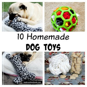 10 Homemade Dog Toys