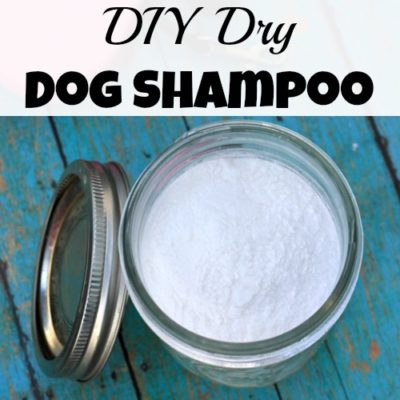 DIY Dry Dog Shampoo