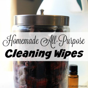 Homemade All-Purpose Cleaning Wipes