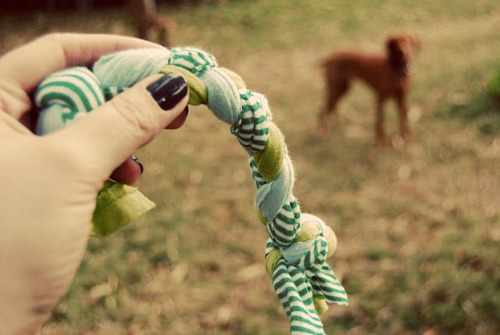 DIY Braided Scraps Dog Toy