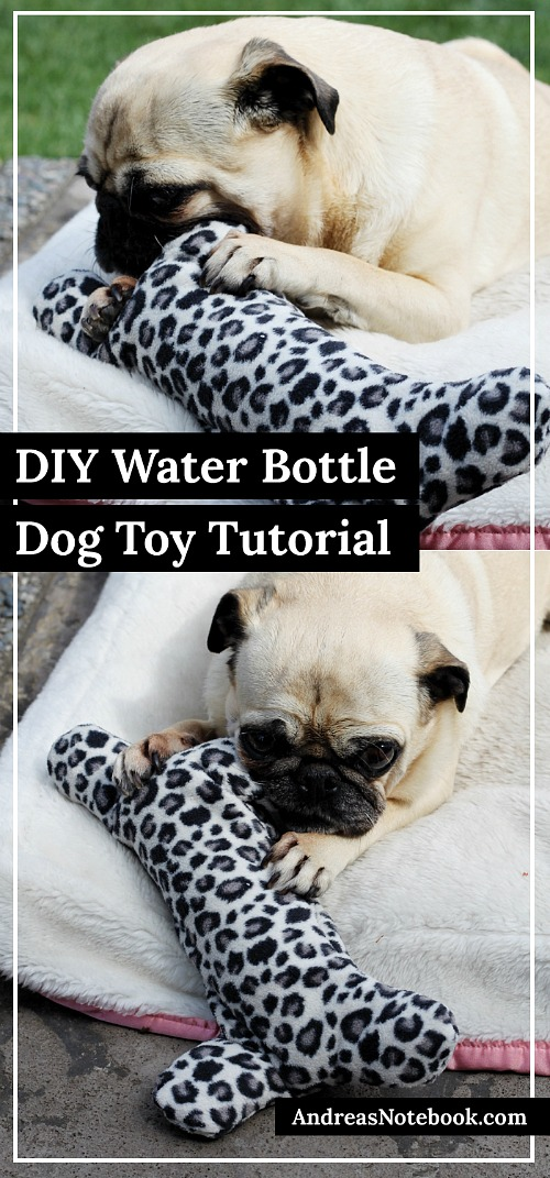 DIY Water Bottle Dog Toy
