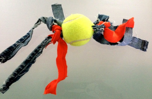 Homemade Tennis Ball Buddy Toy