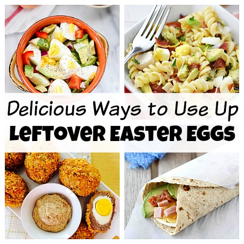 Don't throw away your leftover Easter eggs! Instead, use them in one of these recipes! There are so many yummy ways to eat hard boiled eggs!