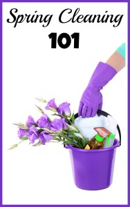 This spring cleaning 101 guide includes spring cleaning tips and tricks and free spring cleaning checklists that will make your cleaning fast and easy!