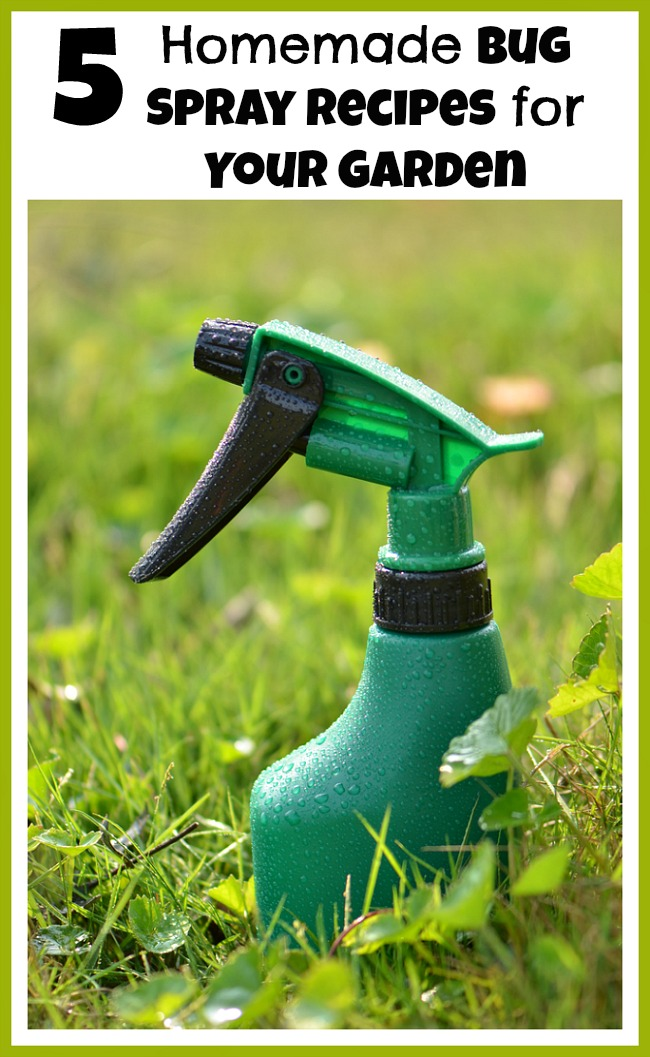 Why spray a bunch of chemicals in your garden when you can easily make your own safe, homemade bug spray? Check out these helpful DIY pesticides!