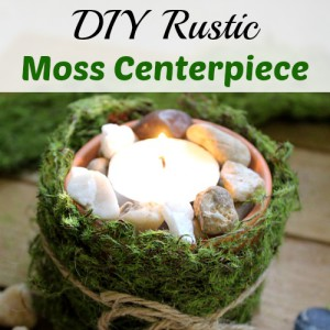 DIY Rustic Moss Centerpiece Candleholder