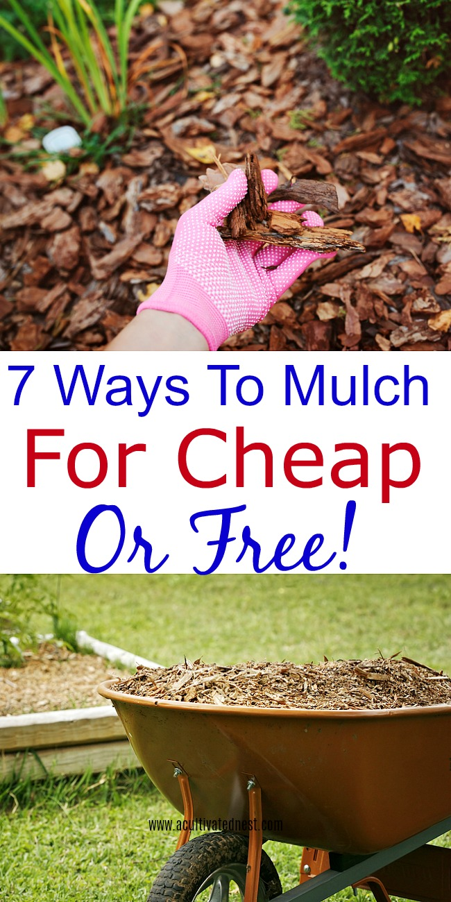 How to find free or cheap mulch-Do you need to apply a layer or two of mulch to your garden or landscaping? Take a look at these ways to mulch for cheap or free!