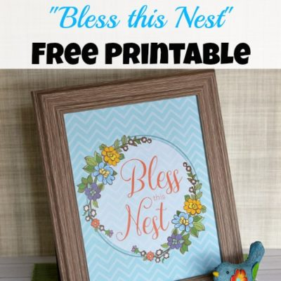 """Bless this Nest"" Free Printable Artwork"