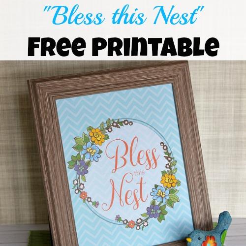 Bless this Nest Free Printable Artwork