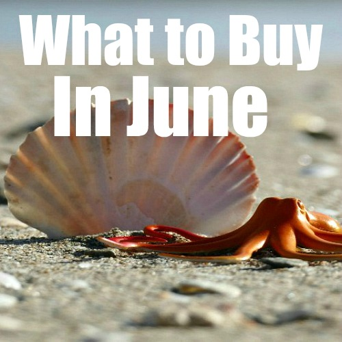 What To Buy In June to Save Money- If you want to save money in June, you need to know what will be on sale! Here are 50 items that will be on sale in June that you won't want to miss out on! | seasonal sale schedules, June clearance items, products on sale in June, #moneySavingTips #saveMoney #frugalLiving #ACultivatedNest