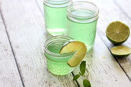Homemade Mojito Gel Air Fresheners