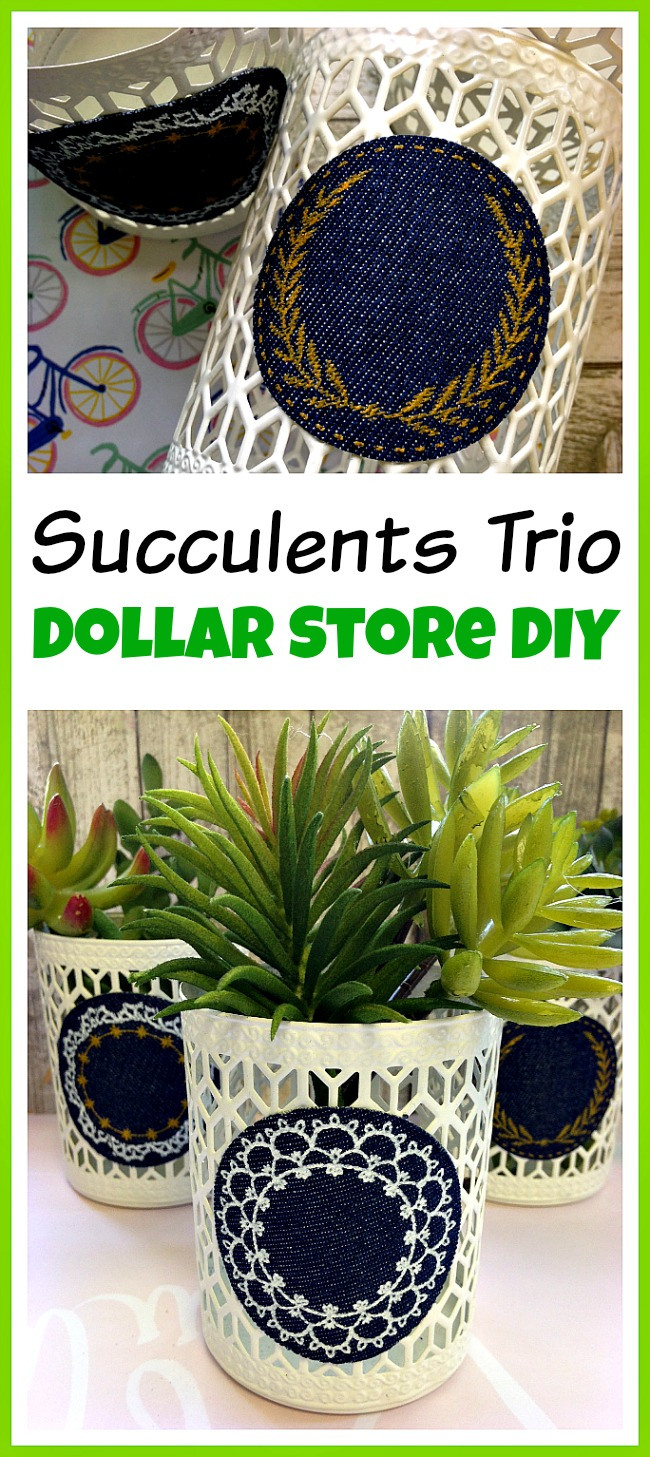 You don't have to spend a lot of money to make something pretty! Make this easy dollar store DIY decor project and create a beautiful succulents trio!
