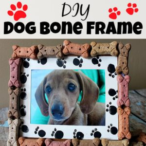 DIY Dog Bone Frame