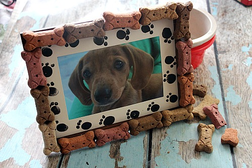 What better way to treasure your pet than with a cute picture in an equally cute frame! Make this DIY dog bone frame to display your adorable dog's photo!