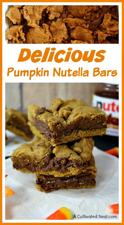 Pumpkin Nutella Bars- Not only are pumpkins full of healthy nutrients, but they're also really tasty! This fall, you have to try some of these pumpkin dessert recipes!